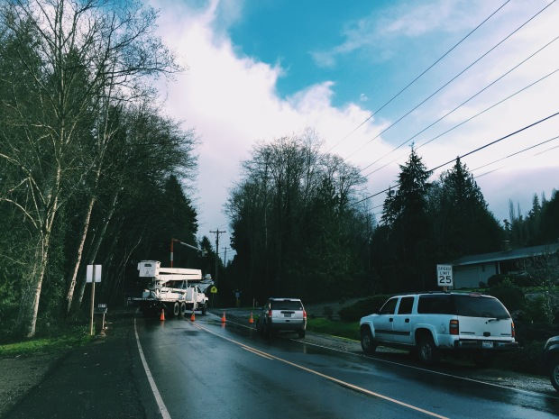 cars waiting inline while workers clear downed tree brownsville washington