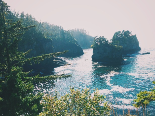 washington coastline neah bay cape flattery