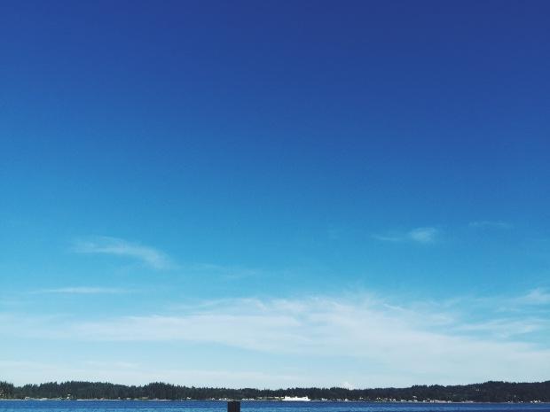 Washington ferry passing illahee state park